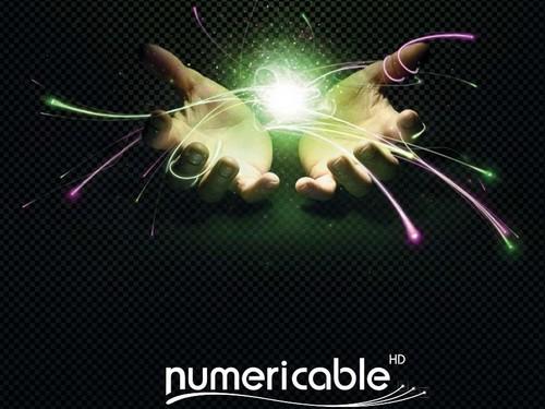 Numericable : Mise en place du Tout Numérique