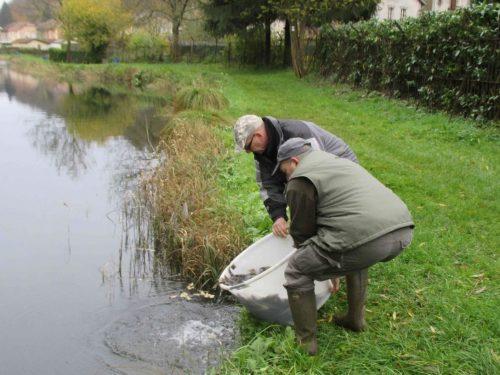 L'association de pêche dans les filets