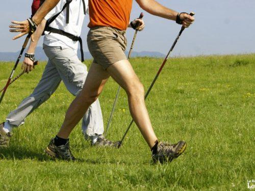 Venez marcher, c'est bon pour la santé !