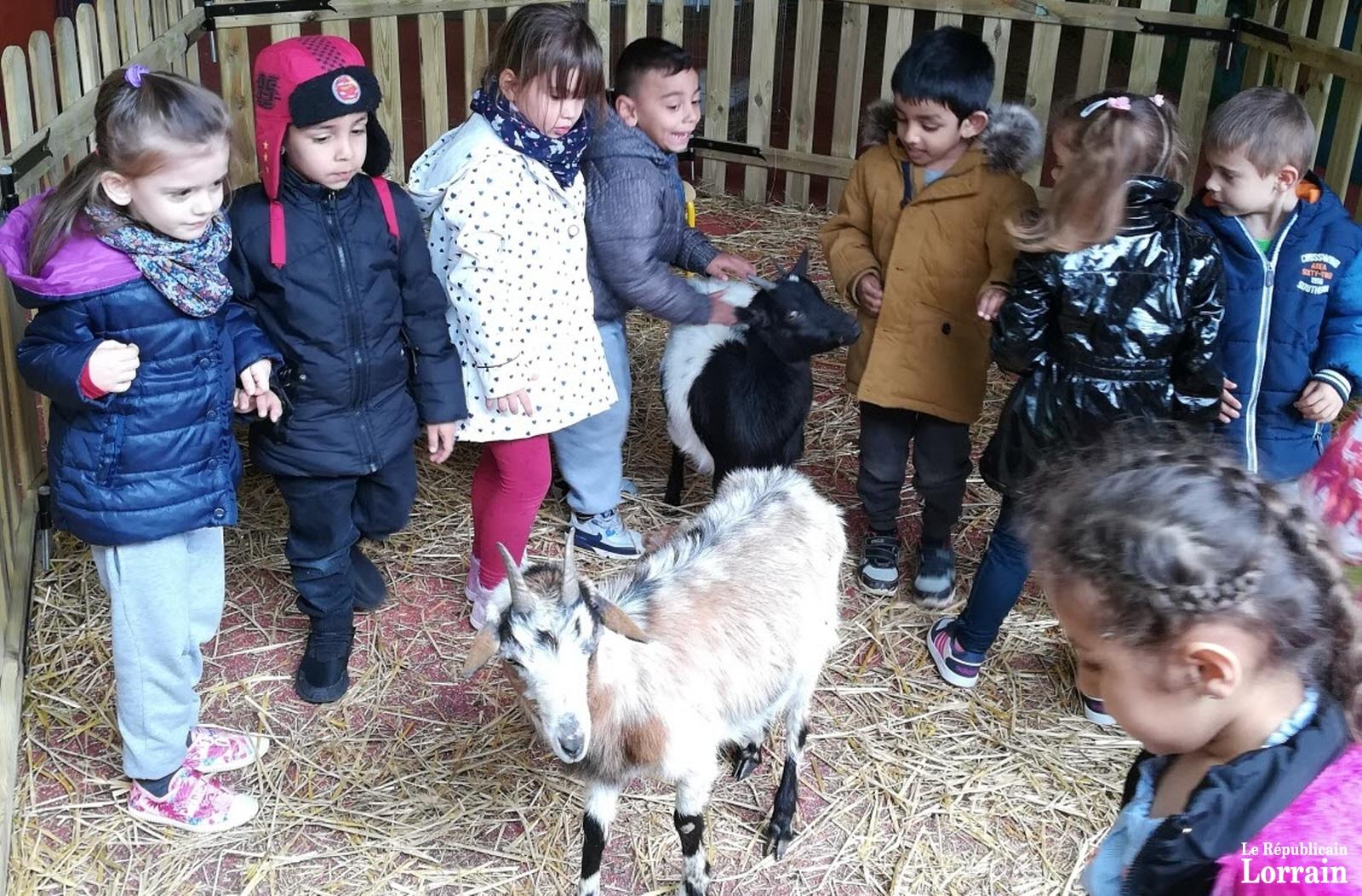 La ferme à la maternelle de Landrivaux